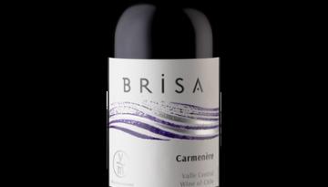 VISTAMAR BRISA CARMENERE 0,75L